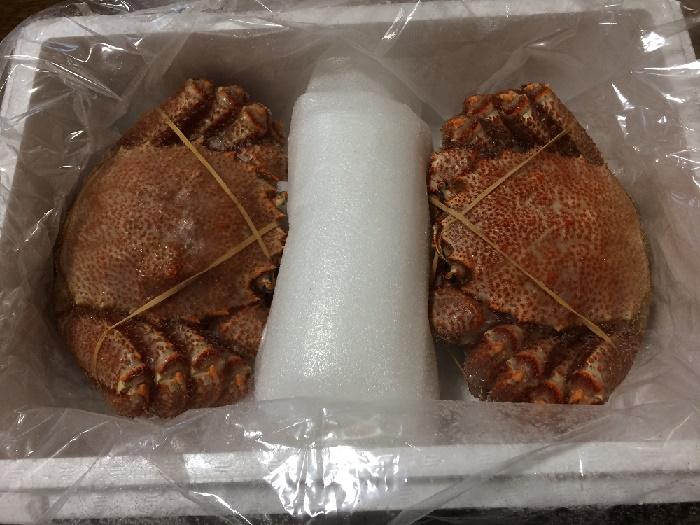 【ふるさと納税】「北海道根室市」から毛ガニが届きました