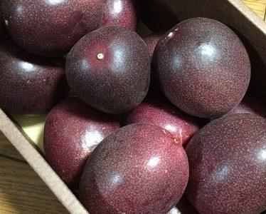 【ふるさと納税】「鹿児島県肝付町 」からパッションフルーツが届きました