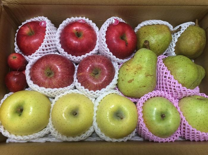 【ふるさと納税】「山形県天童市」からフルーツ詰合せが届きました