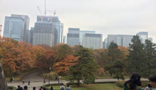 「皇居乾通り」の秋季一般公開に行ってきた【2018年12月1日~9日】